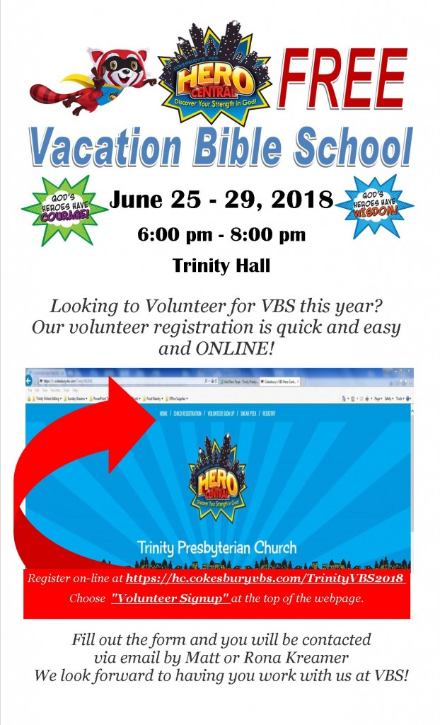 VBS volunteer for website